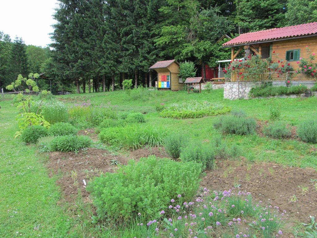 Kmetija-Plavica-003